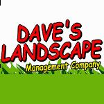 Daves Landscape_150
