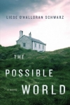 The Possible World (Schwarz)