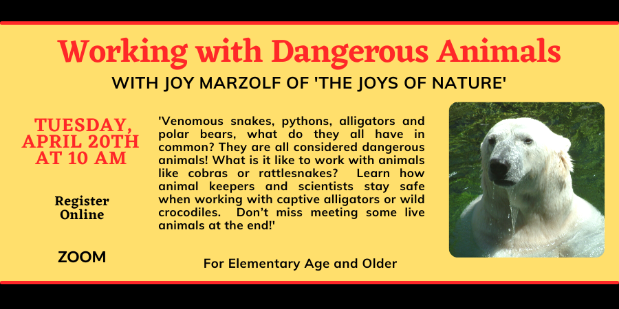 Copy of Copy of Working with Dangerous Animals